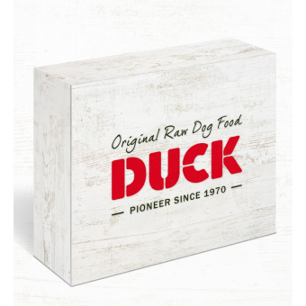 Duck Nature Box Chicken Farm